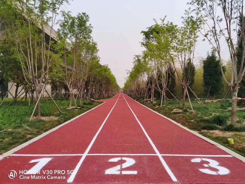 郑西高铁两侧体育公园全塑型必威体育体育